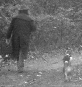 walking-in-the-rain-w-a-dog-cropped